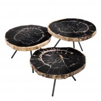 DE SOTO PETRIFIED WOOD COFFEE TABLE SET OF 3