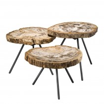 De Soto Light Petrified Wood Coffee Table Set of 3