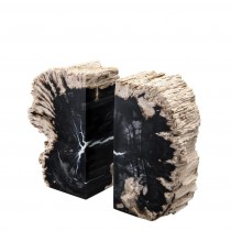 Opia Petrified Wood Bookend