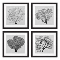Shadow Sea Fans Set of 4 Prints