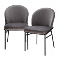 Willis Savona Grey Velvet - Set of 2